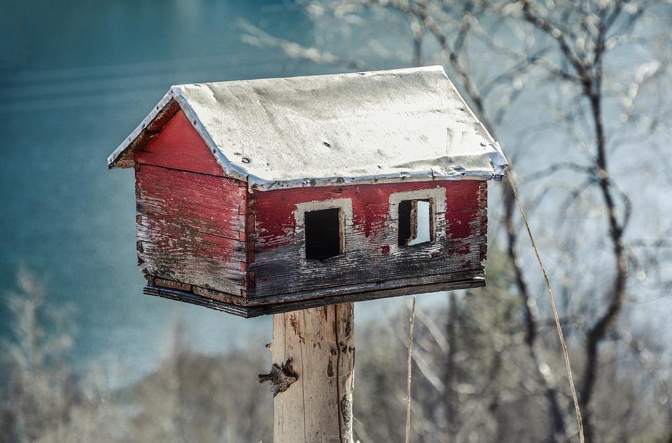 costruire casa su albero